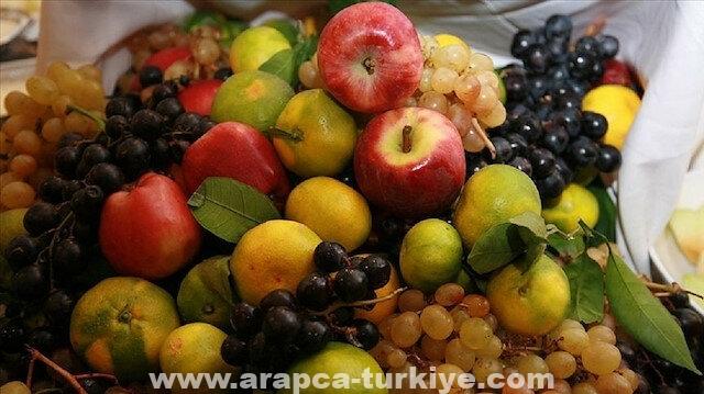 تركيا.. صادرات الخضروات والفواكه الطازجة تنمو 25 بالمئة