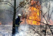 أذربيجان ترسل 500 عنصر لتركيا لإخماد حرائق الغابات