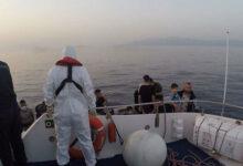 في يوم واحد.. ضبط وإنقاذ 429 مهاجرًا غير نظامي غربي تركيا