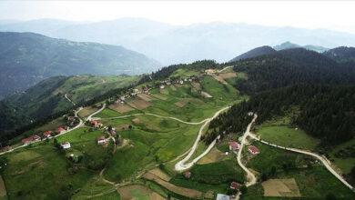 """""""تشامباشي"""" التركية.. طبيعة زاخرة بجميع درجات اللون الأخضر"""
